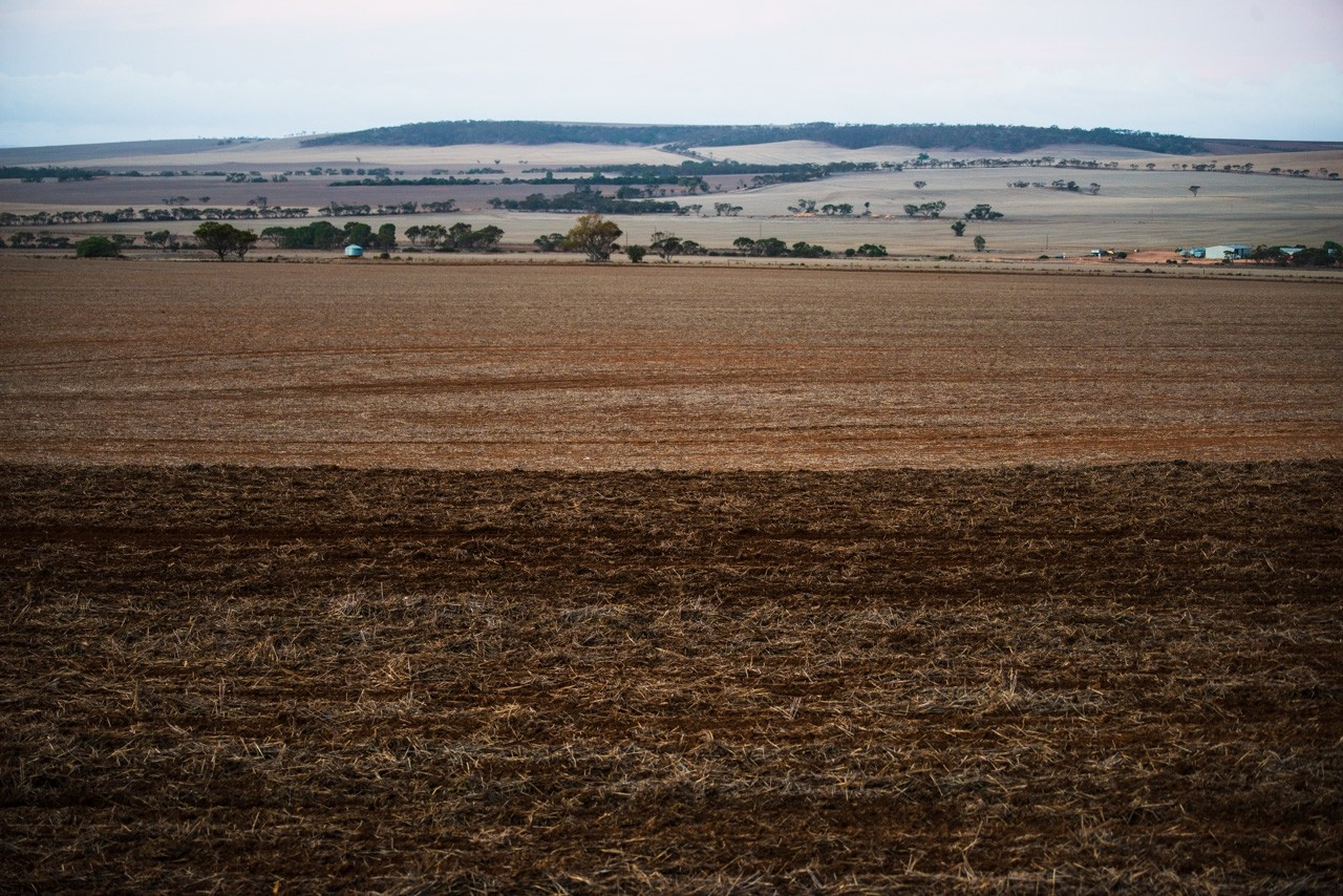 ploughing the fields in south australia