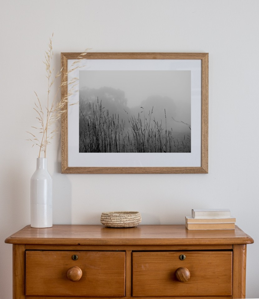 Framed print by Wendy Philip